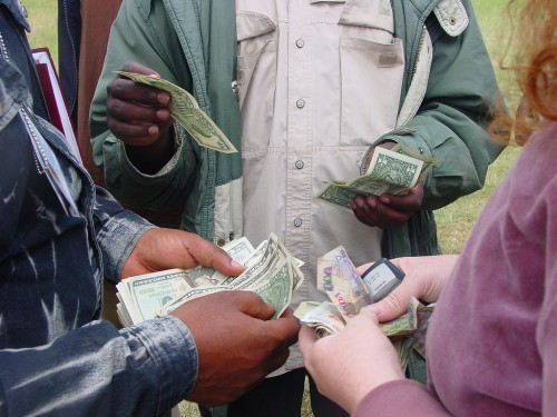 Public finance management and the environment are new areas for Central African governments. Laura/flickr