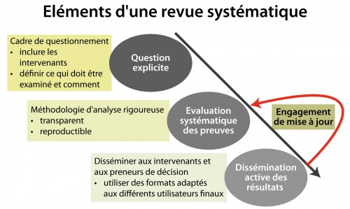 Elements-of-a-systematic-review_fr