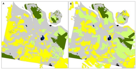 Panel A: Land-use map generated using pre-fire LANDSAT 8 imagery where yellow and light green areas are grid-like plantation systems of oil palm and acacia, respectively, characteristic of companies; and where gray areas are regions dominated by land parcels of varying shapes, size, and orientation, characteristic of small- and mid-level actors. Panel B: Maps of oil palm (yellow) and acacia (light green) concessions held by companies according to national and provincial government land-use maps. Dark green areas are remaining natural forests, black areas are main cities, and dark blue areas are oil and gas zones.