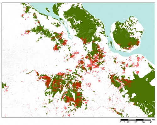 Figure 7. Areas that burned in June 2013 (red) and natural forest cover in 2007 (green).