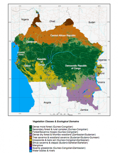 What is the climate like in central african republic