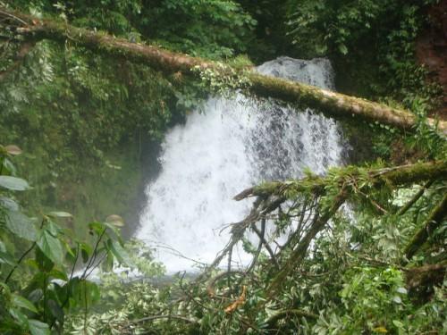Un estudio muestra que las áreas que contienen altas concentraciones de carbono y biodiversidad no siempre son las mismas, afirma Bruno Locatelli, científico del Centro para la Investigación Forestal Internacional y del Centro de Cooperación Internacional en Investigación Agronómica para el Desarrollo. Fotografía cortesía de: DrWho