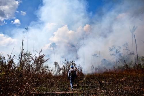 Queremos ver en qué medida la aparición de incendios y su propagación es influenciada por el clima, los cambios en la cobertura terrestre y los procesos sociales, dice Víctor Gutiérrez, científico investigador del Instituto de la Tierra en la Universidad de Columbia. Fotografía de: Ernesto Benavides