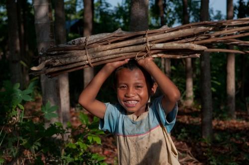 Seorang anak laki-laki mengumpulkan kayu bakar di Nusa Tenggara Timur, Indonesia. Pentingnya hutan untuk energi dan penghidupan membuat hutan penting untuk dimasukkan dalam Sustainable Development Goals. Foto oleh CIFOR