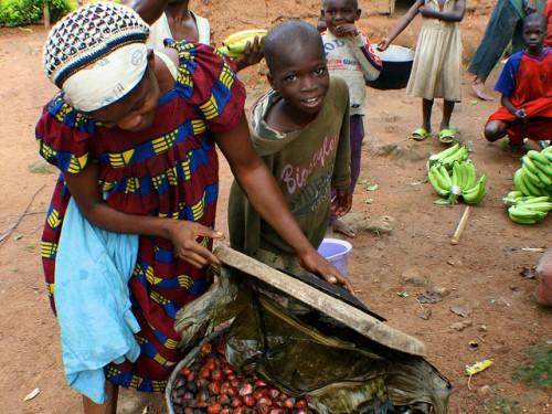 Asando alimentos en Camerún. Nueva investigación resalta los diferentes papeles que los productos forestales no maderables desempeñan, o podrían desempeñar, en paisajes más amplios. Foto Terry Sunderland/CIFOR.