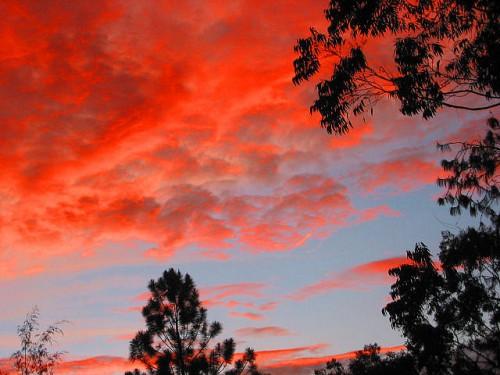 Awan merah di timur Papua Nugini. Apakah matahari akan terbenam untuk REDD+ dan skema berbasis pasar lain yang bertujuan mengurangi deforestasi? Foto milik Kahunapule Michael Johnson