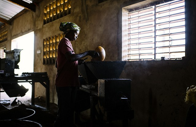A woman produces shea butter