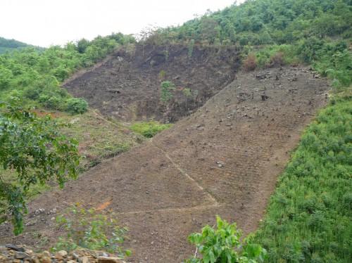 Ladera deforestada en China, donde el Gobierno está tratando de reforestar las tierras de pendiente para evitar la erosión. Fotografía de Nick Hogarth / CIFOR.