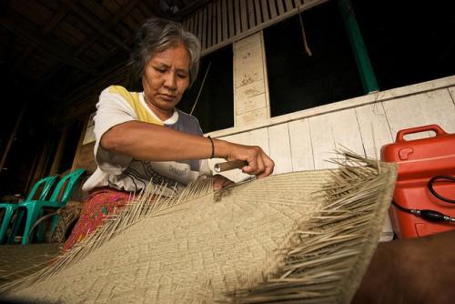 Seorang perempuan sedang membuat tikar bemban di Kalimantan Barat. Kaum perempuan dan jender telah menjadi bagian dari agenda pembangunan untuk selama hampir setengah abad, dan mencakup perdebatan tentang apakah hak-hak perempuan paling baik dijamin atas dasar efisiensi ekonomi atau kesetaraan. Ramadian Bachtiar/foto CIFOR