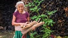 COP23: Es hora de hablar de restauración forestal y cuestiones de género