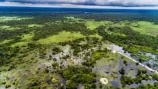COP23 Special: 'No Paris without peatlands'
