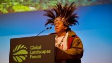 Global Landscapes Forum: Pueblos indígenas y biodiversidad en el centro