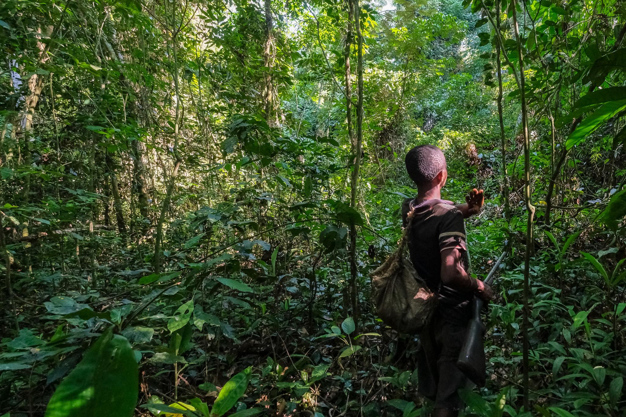 El valor del conocimiento local para entender la pérdida de la vida silvestre