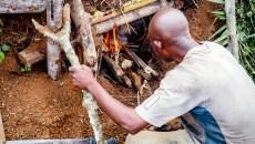 Améliorer le secteur du bois énergie en Afrique