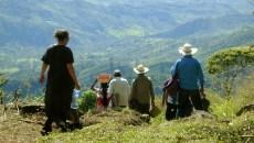 Estudio revela contradicciones y oportunidades para REDD+ en México