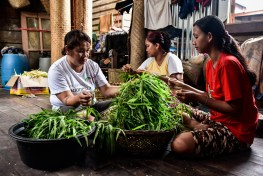 Changing diets, malnutrition, food security, Three Indonesian women prepare a pile of green vegetables for dinner in the vilage