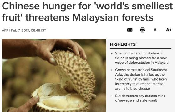 Durain deforestation malaysia chinese markets