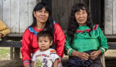 Permalink to: International Women's Day: Indigenous women off the charts