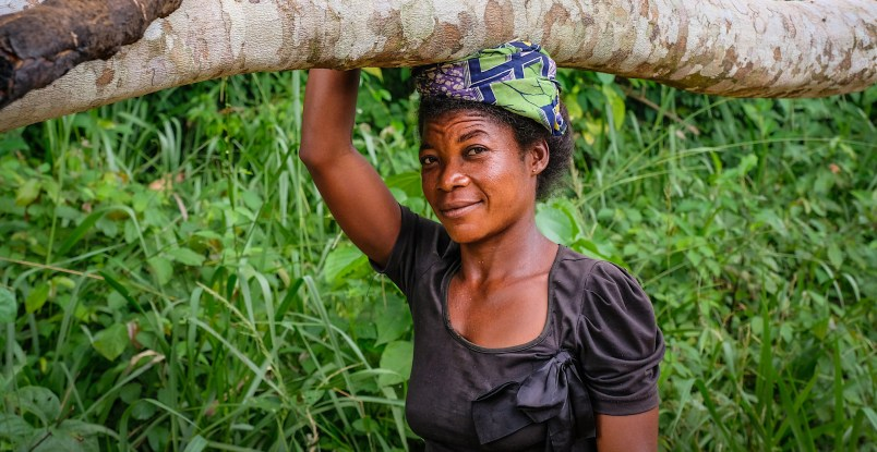 Community forestry - CIFOR Forests News