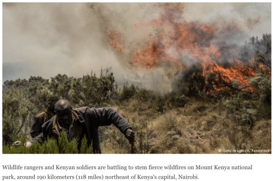 Kenya wildfire, Mount kenya, mount kenya wildfire, wildfire
