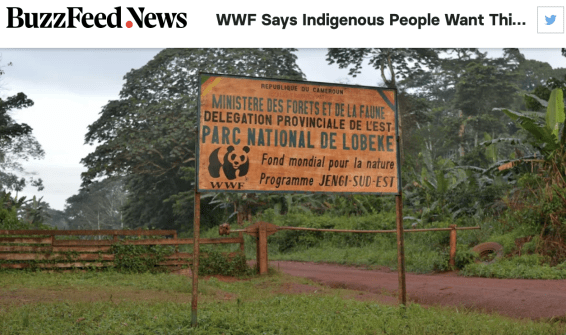 WWF, Buzzfeed, EU, European Union funding, indigenous, colonialism, national parks, democratic republic of congo, Messok Dja