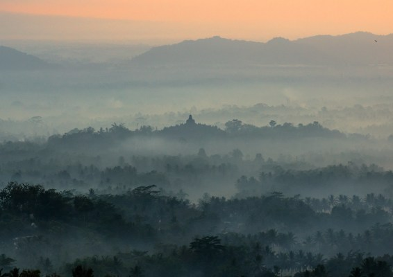 indonesia, social forestry, yogyakarta