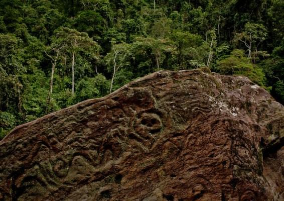 Photo of a petroglyph in the Ecuadorian Amazon forest