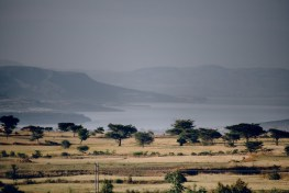A view of arid fields dotted with trees and a large lake and mountains in the distance