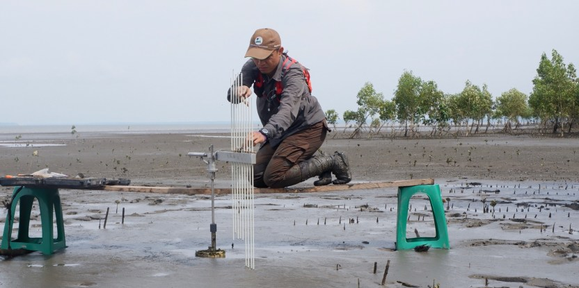 A man kneels on a mudflat and takes a measurement