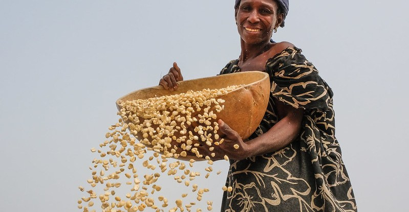 A woman shakes maize kernels out of a large bowl