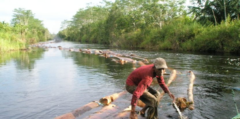 A man transport logs in a canal in Indonesia