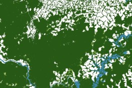 Image shows a satellite image of deforestation in Cameroon in green, white and blue