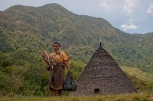 Firewood is the main energy source of Wae Rebo people in East Nusa Tenggara, Indonesia. Photo: Aulia Erlangga /CIFOR
