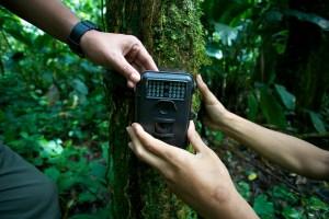 Forest monitoring in Indonesia. Photo: Mokhamad Edliadi/CIFOR