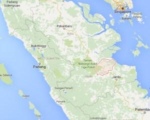 Tanjung Jabung Barat district, Sumatra, Indonesia