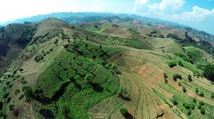 Model agroforestry landscape in Son La Province. Photo: World Agroforestry Centre