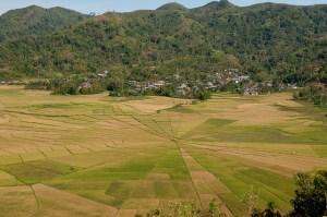 Photo: Sustainable land-use planning needs coordination. Aulia Erlangga/CIFOR