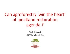 peatland-restoration-role-of-agroforestry-by-atiek-widayati-icraf-1-638