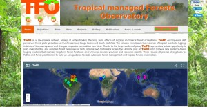 The Tropical managed Forest Observatory is a product of partnerships within FTA. Click on image to see more.