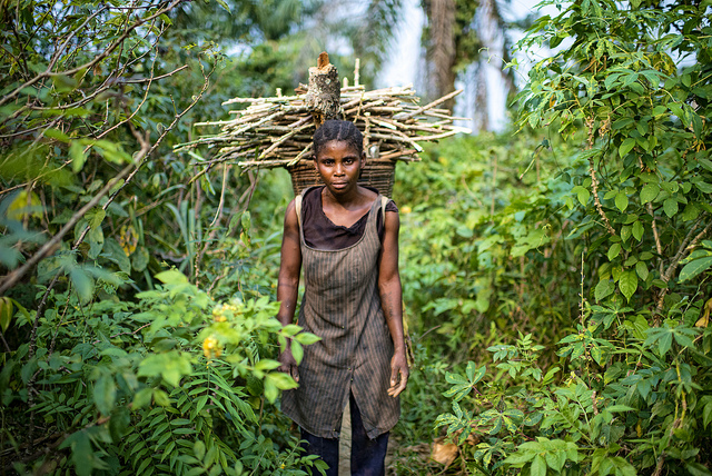 Photo: Ollivier Girard/CIFOR