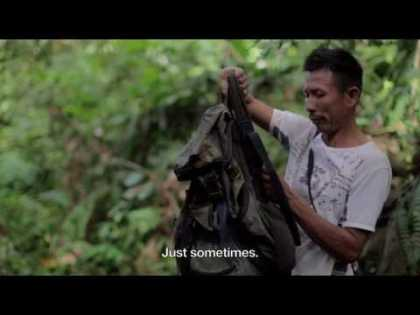 Future solutions for bushmeat in Colombia