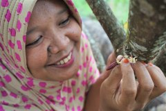 Smart use of trees: Co-investment scheme improves livelihoods, maintains ecosystem services