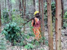 ACM levels the playing field for women and men in forest-adjacent communities