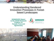 Understanding gendered innovation processes in forest-based landscapes: Case studies from Indonesia and Kyrgyz Republic