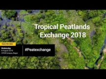 Peatlands and ecosystem services at the Tropical Peatlands Exchange 2018