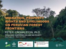 Migration, property rights and livelihoods on Peruvian forest frontiers