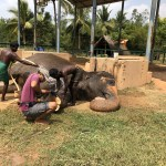 Sandhya relaxing as she's given a bath and a foot treatment