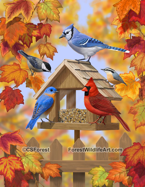 Fall Bird Feeder Wallpaper Forest Wildlife Art Autumn Aquaintances