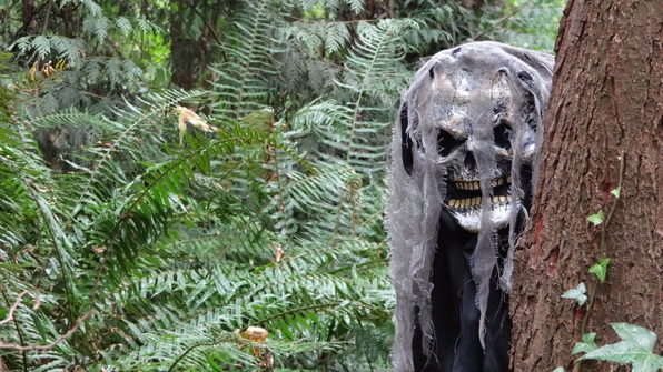 Is #America Stuck In The Forest #hunting #monsters? – My