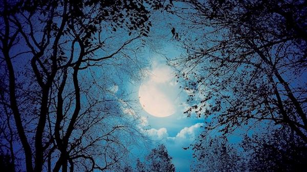 blue moon 2015